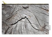 Rip Van Winkle Carry-all Pouch