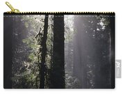 Road Through Redwoods Carry-all Pouch