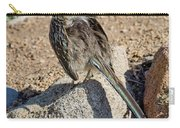 Roadrunner Sunning Atop Rock Carry-all Pouch