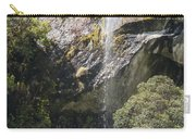 Roadside Falls Carry-all Pouch
