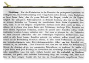 Robert Koch: Paper, 1881 Carry-all Pouch