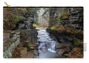 Robert Treman State Park Carry-all Pouch by Frozen in Time Fine Art Photography
