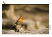 Robin At Feeder Carry-all Pouch