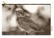 Robin Bird Black And White Carry-all Pouch