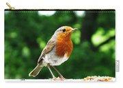 Robin Bird Photograph Carry-all Pouch