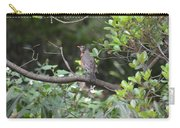 Robin In The Brush Carry-all Pouch