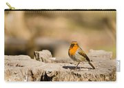 Robin In The Sun Carry-all Pouch
