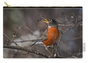 Robin Pictures 100 Carry-all Pouch