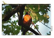 Robin Waiting Carry-all Pouch