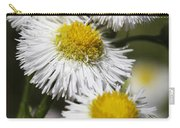 Robin's Plantain Wildflowers - Erigeron Pulchellus Carry-all Pouch