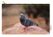 Rock Pigeon 030515 A Carry-all Pouch
