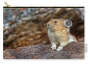 Rock Rabbit Carry-all Pouch