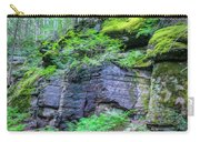 Rock Wall Trail Of The Cedars Glacier National Park Painted Carry-all Pouch