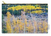 Rocky Mountain Autumn Contrast Carry-all Pouch by James BO  Insogna