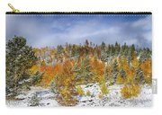 Rocky Mountain Autumn Storm Carry-all Pouch by James BO  Insogna
