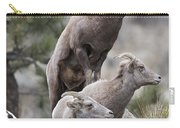 Rocky Mountain Big Horns Carry-all Pouch