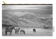 Rocky Mountain Country Morning Bw Carry-all Pouch
