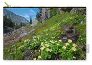Rocky Mountain Summer Landscape Carry-all Pouch