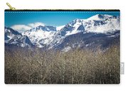 Rocky Mountain Woodland Carry-all Pouch