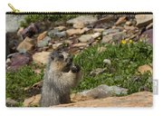 Rodent In The Rockies Carry-all Pouch