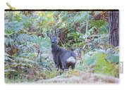 Roe Buck In Woodland Carry-all Pouch