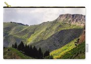Rolling Hills Carry-all Pouch