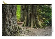 Root Feet Collection 1 Carry-all Pouch