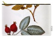 Rosa Villosa Carry-all Pouch