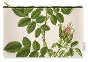 Rose Eglanteria Carry-all Pouch
