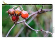 Rose Hip Wet Carry-all Pouch