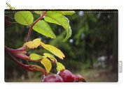 Rose Hips Reaching Carry-all Pouch