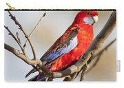 Crimson Rosella 1 - Australia Carry-all Pouch
