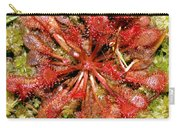 Round-leaved Sundew Carry-all Pouch