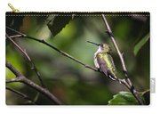 Ruby-throated Hummingbird 3 Carry-all Pouch