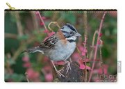 Rufous-collared Sparrow Carry-all Pouch