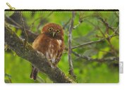 Rufous Morph Costa Rican Pygmy-owl Carry-all Pouch