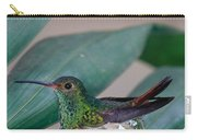 Rufous-tailed Hummingbird On Nest Carry-all Pouch