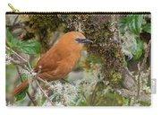 Rufous Wren Carry-all Pouch