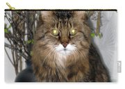 Runcius- Palm Sunday Kitty Carry-all Pouch