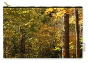 Rustic Road Carry-all Pouch