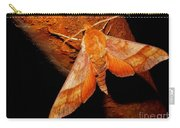 Rusty Sphinx Moth Carry-all Pouch