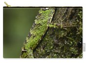 Sabah Eyebrow Lizard Mt Kinabalu Np Carry-all Pouch by Ch'ien Lee