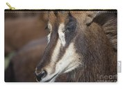 Sable Antelope V5 Carry-all Pouch