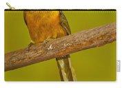 Saffron Toucanet Carry-all Pouch
