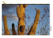 Saguaro 2 Carry-all Pouch