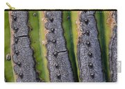 Saguaro Cactus Close-up Carry-all Pouch