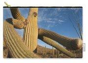 Saguaro Cactus Saguaro Np Arizona Carry-all Pouch
