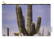 Saguaro Carry-all Pouch