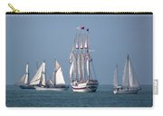 Sailing Lake Erie Carry-all Pouch