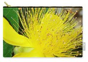 Saint Johns Wort  Carry-all Pouch